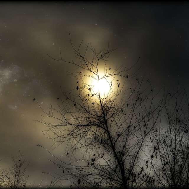Evening 62°F slightly cloudy