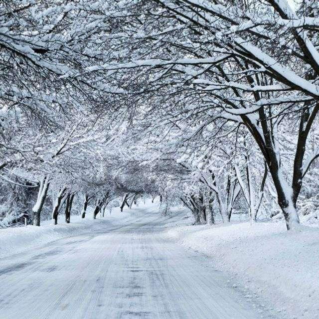 Neve Realmente Fria