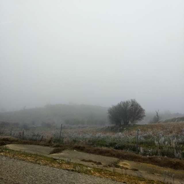 Niebla espesa.
