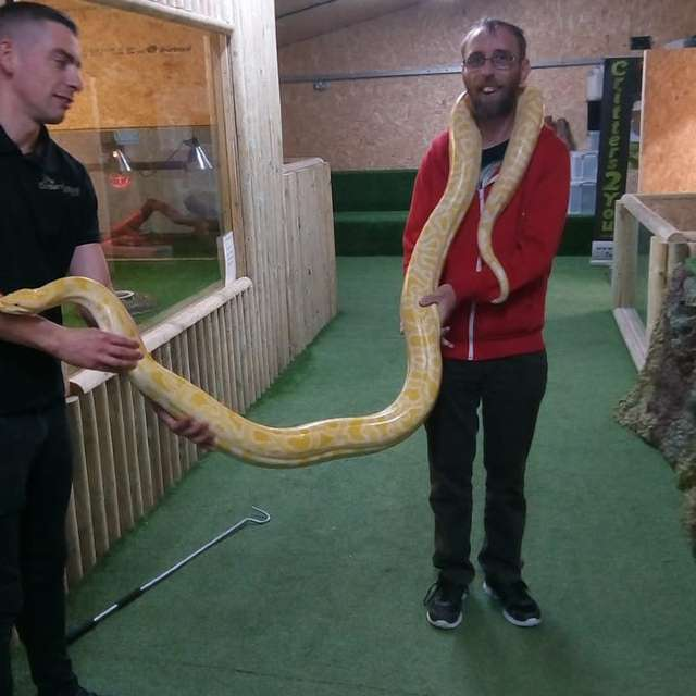 farm snake animal