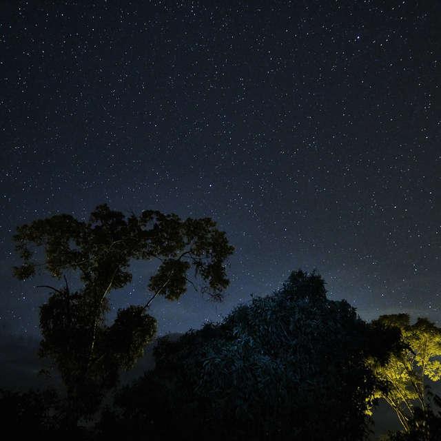 Night Sky Mindo Cloudforest