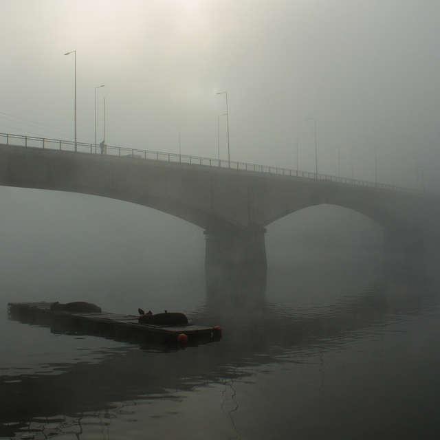 Valdivia Bridge in the Mist