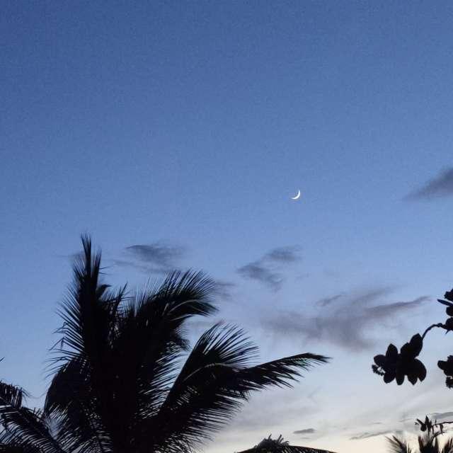 Waxing crescent moon setting.