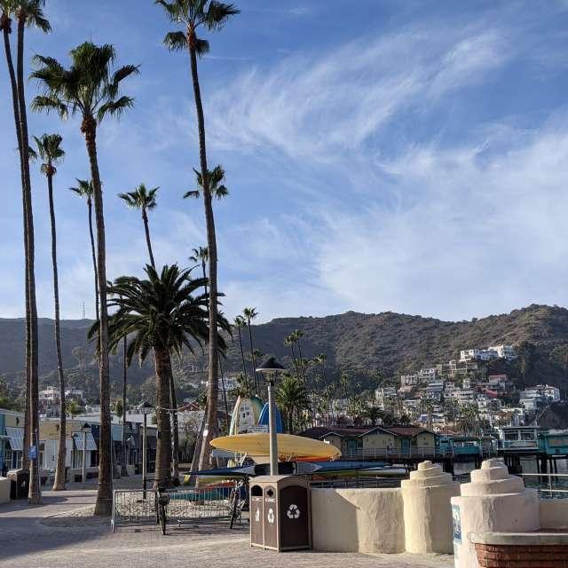 Jan. day on Catalina Island