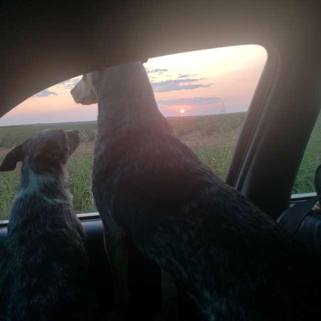 Texas panhandle sunset