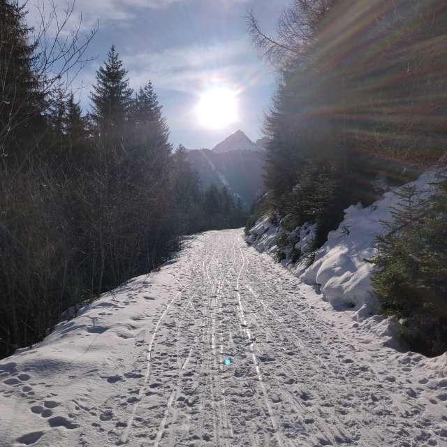sunny day in Alps, Piz Lad