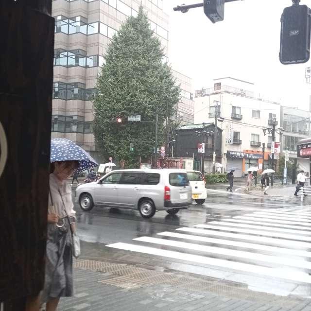 Shibuya.Stream.Tokyo.Japan.