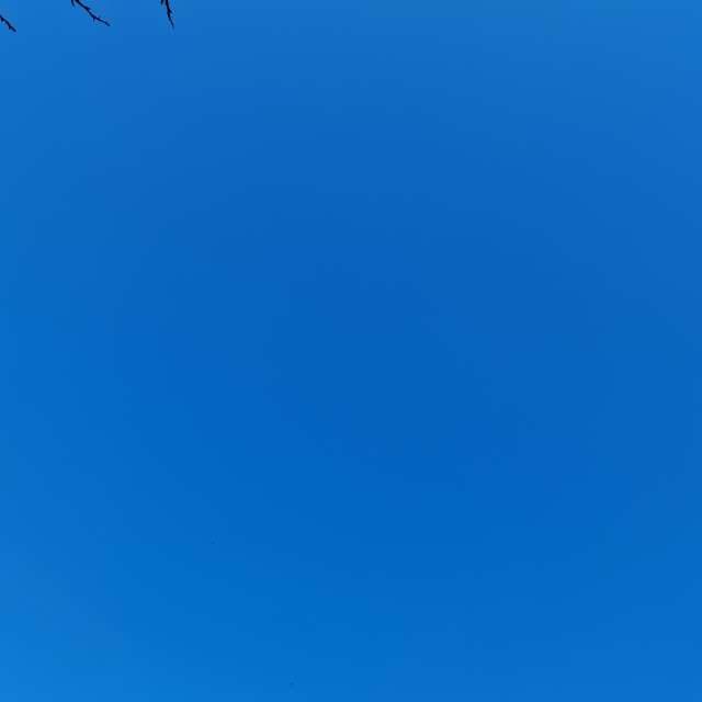 Just blue sky