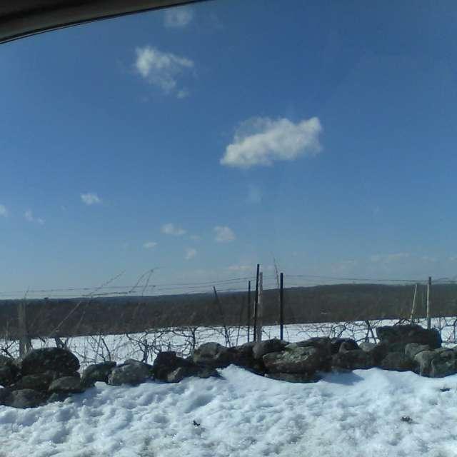 Snowy Hills of Bozrah