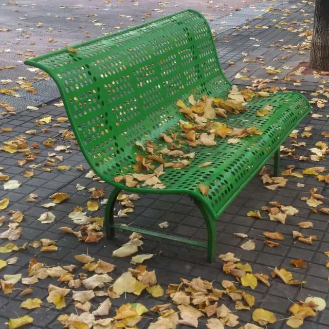 Banco con hojas otoñales.