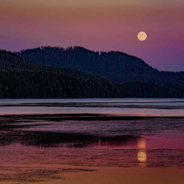 Moonrise, Vancouver Island, BC