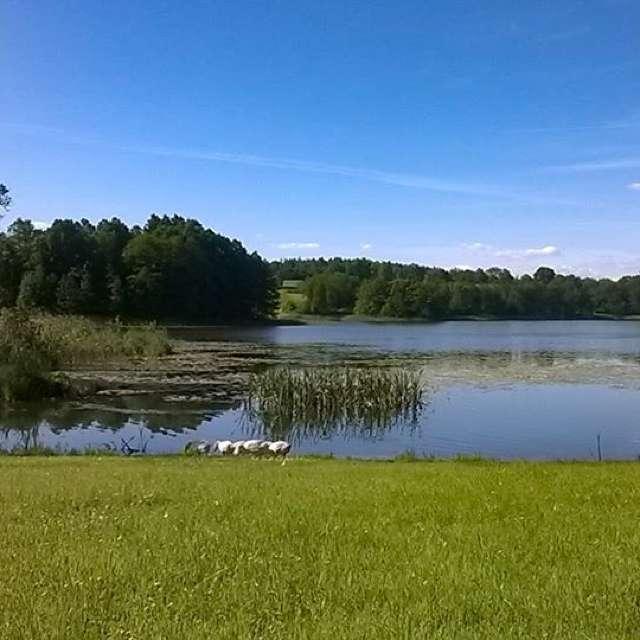 Lake Ilgys